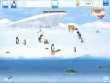 ПингвиноМания