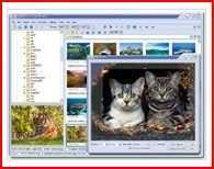 FastStone Image Viewer 3.9